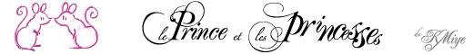 Le Prince et les Princesses de KMiye - France - Poitiers (Vienne/86) Banniere_partenaire